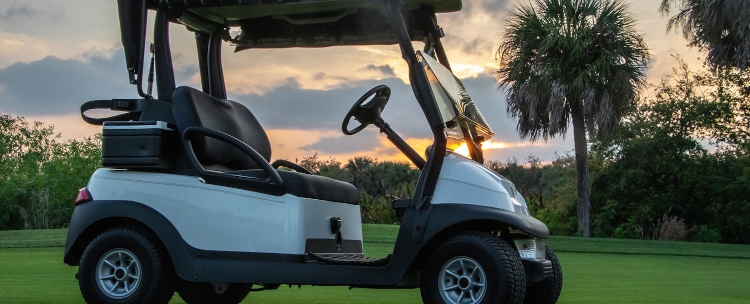 Golf cart on a golf course with palm tree in the background.
