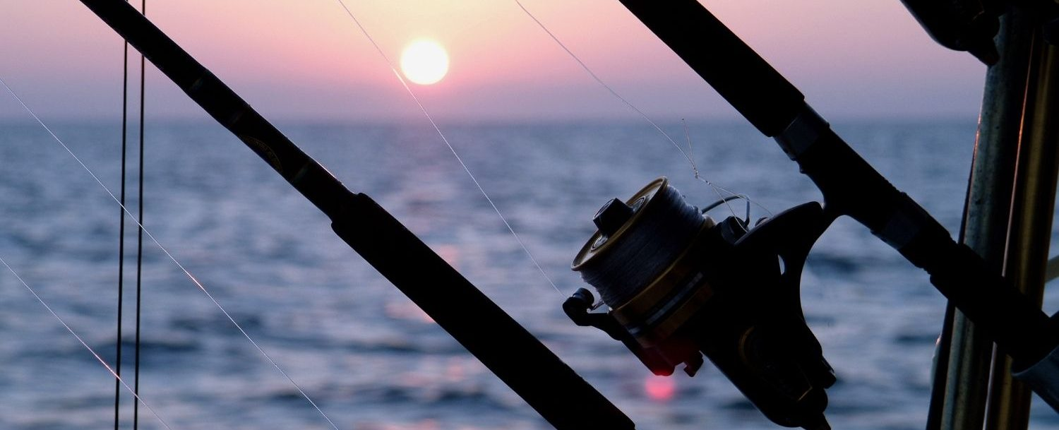 Fishing rod with sunset and ocean in the background.